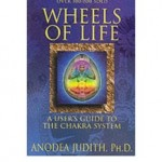Wheels of Life by Anodea Judith. Find it at the Boo Depository.